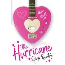 The Hurricane - Suzi's first novel